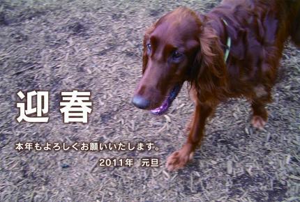 繧「繝ウ繝・ぅ_B_convert_20101231000008