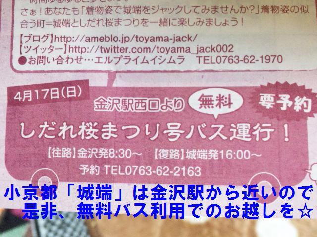 城端しだれ 桜まつり (5)