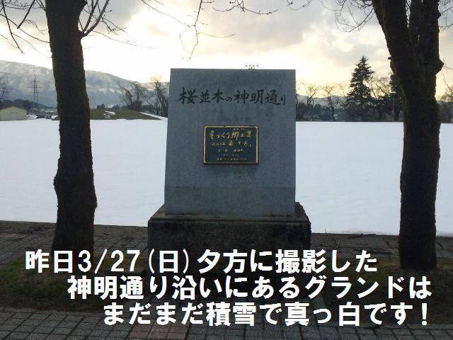 城端神明通り (1)