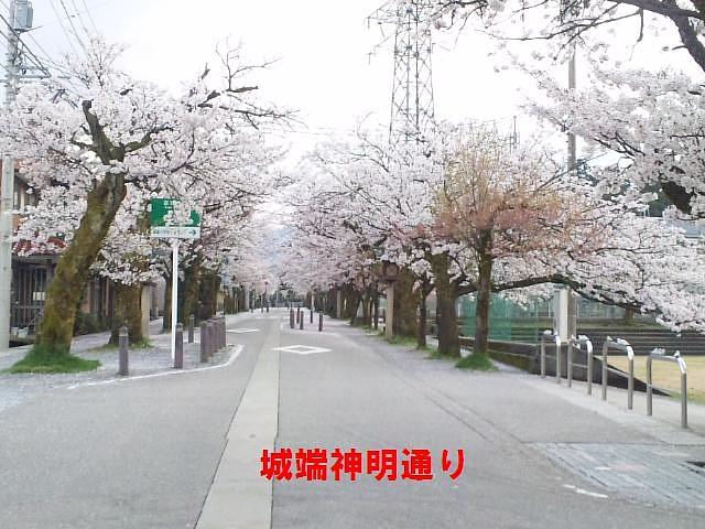 城端神明通り (2)