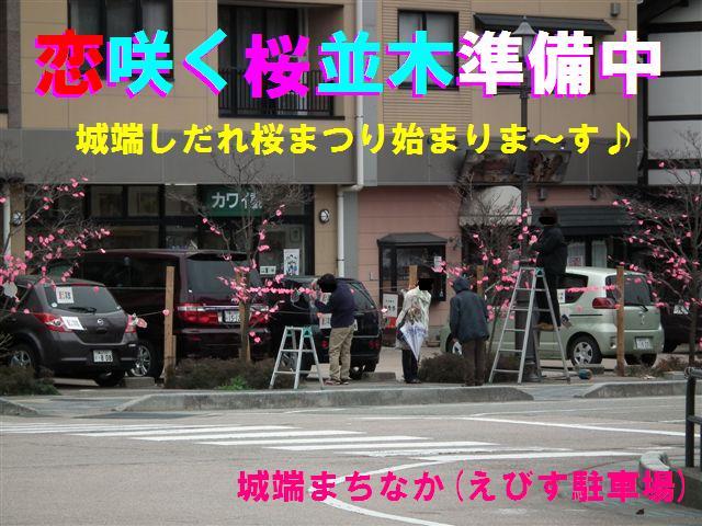 恋咲く桜並木 (2)