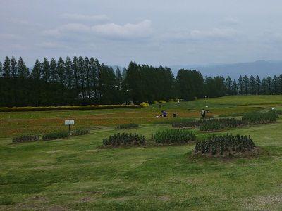 生駒2012