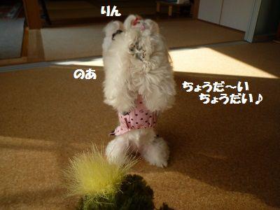おもちゃ後編3