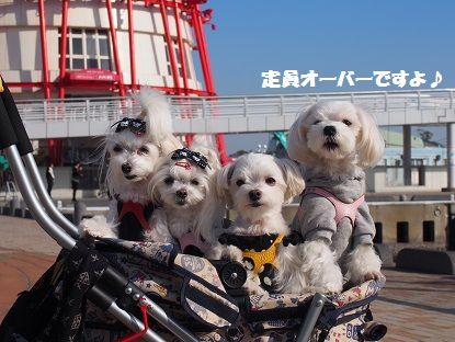 関西終13