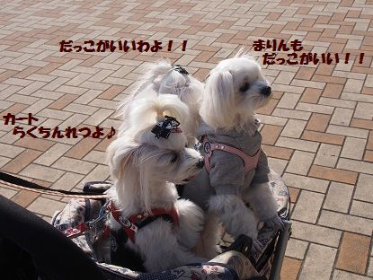 関西終15