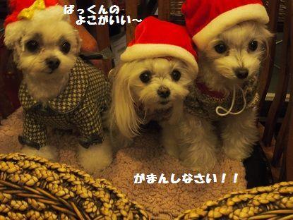クリスマス会13