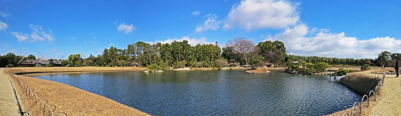 s-20141218 後楽園今日の園内沢の池のワイド風景 (1)