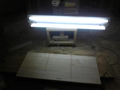桐たんす 採光
