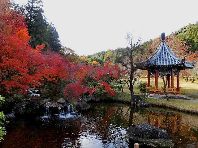 まきび公園8