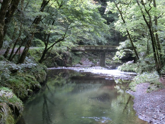 雄橋への道2