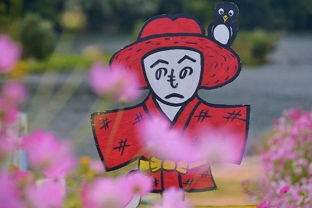 吉井町のコスモス2