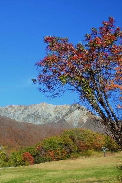 大平平(奥大山スキー場)2