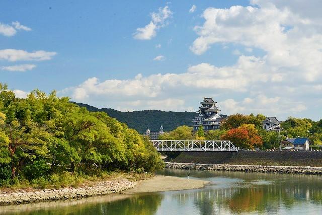 岡山城と菊花展1