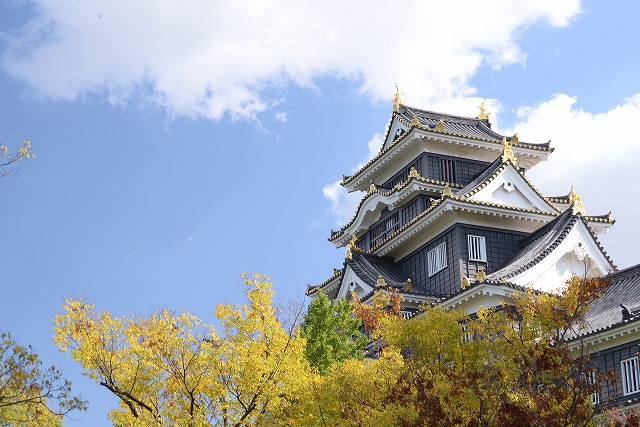 岡山城と菊花展2