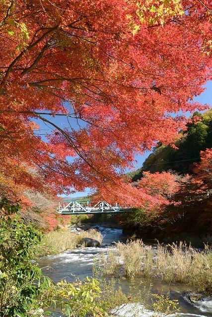 奥津渓の紅葉1-2