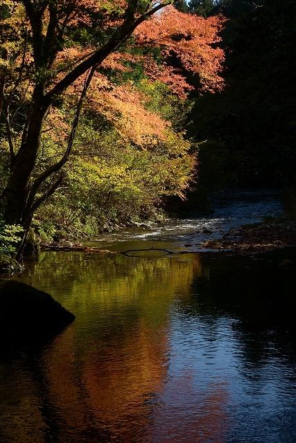 白賀川への映り込み1