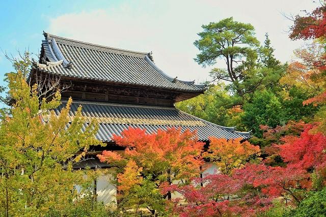 宝福寺の紅葉23