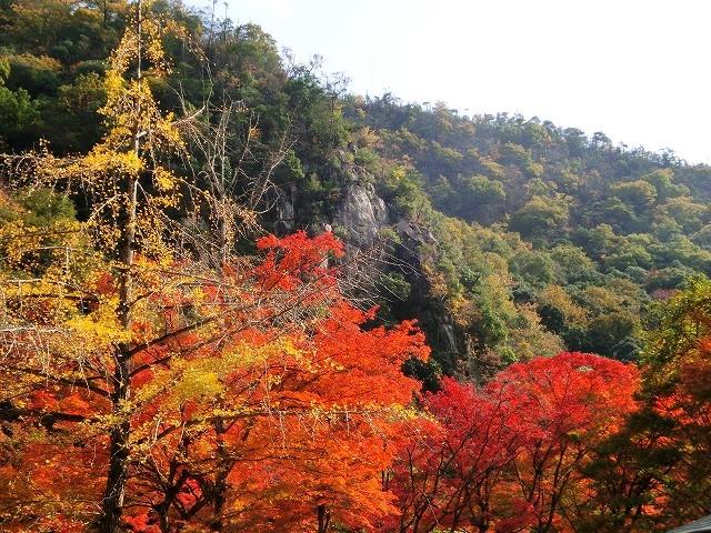 豪渓の紅葉2