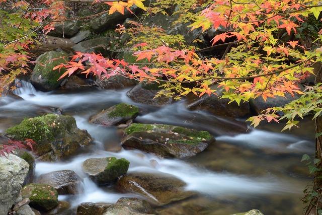 豪渓の紅葉6