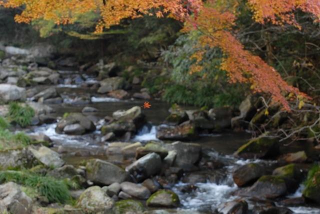 豪渓の紅葉9