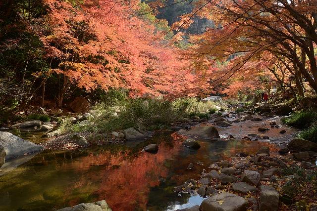 豪渓の紅葉12