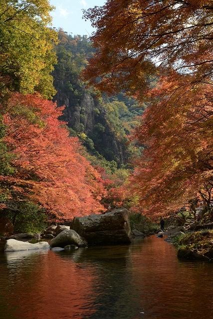豪渓の紅葉13