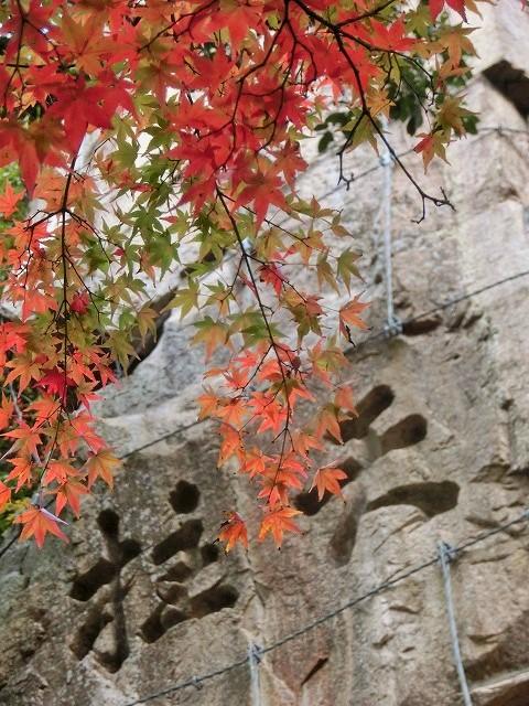 豪渓の紅葉19