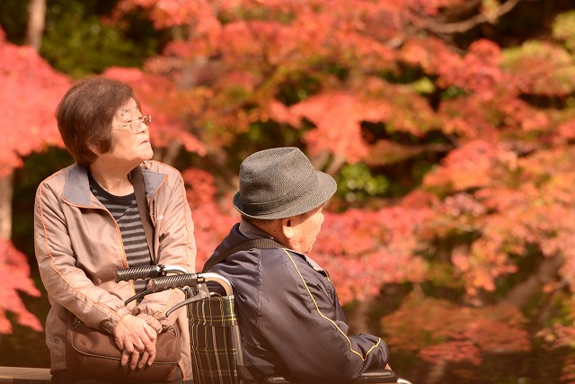 紅葉を楽しむ観光客1