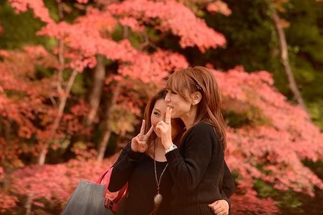 紅葉を楽しむ観光客2