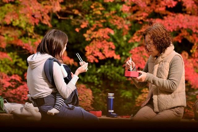 紅葉を楽しむ観光客3