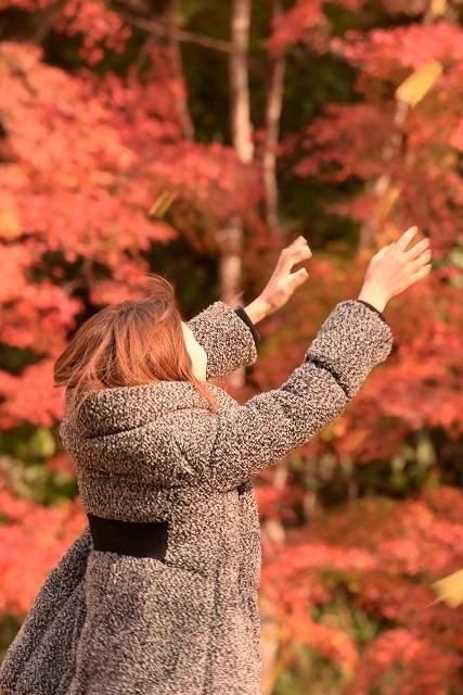 落ちて来るイチョウの葉をつかもうとす女性