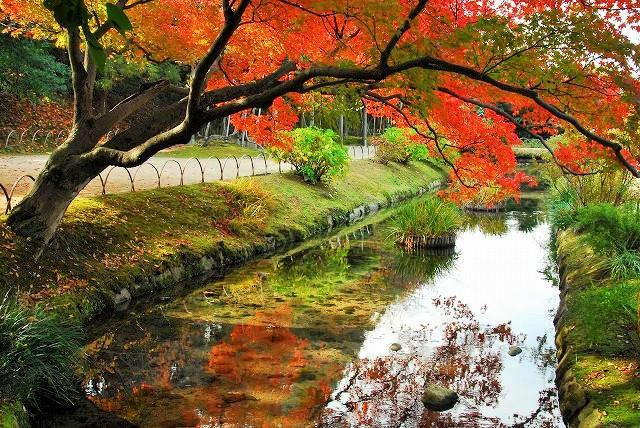 花交の池西1