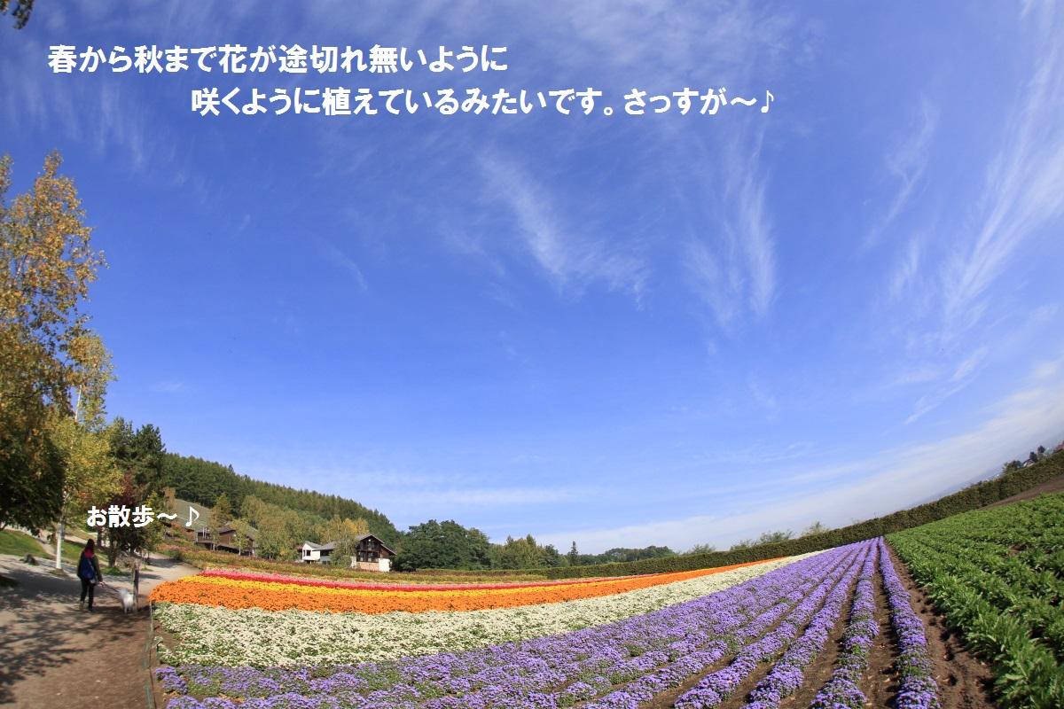 10_201410162333577b0.jpg