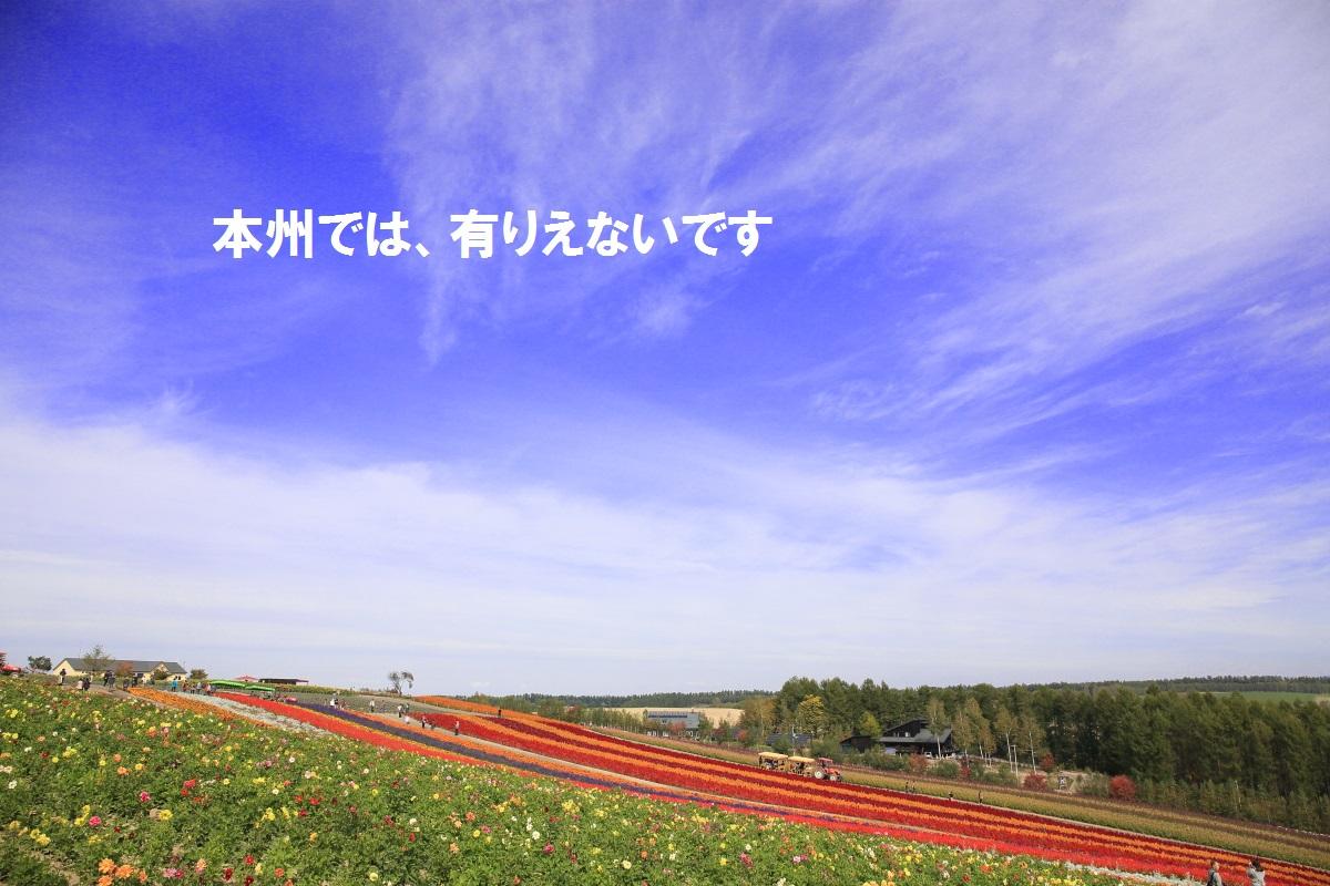 11_2014101322113174f.jpg