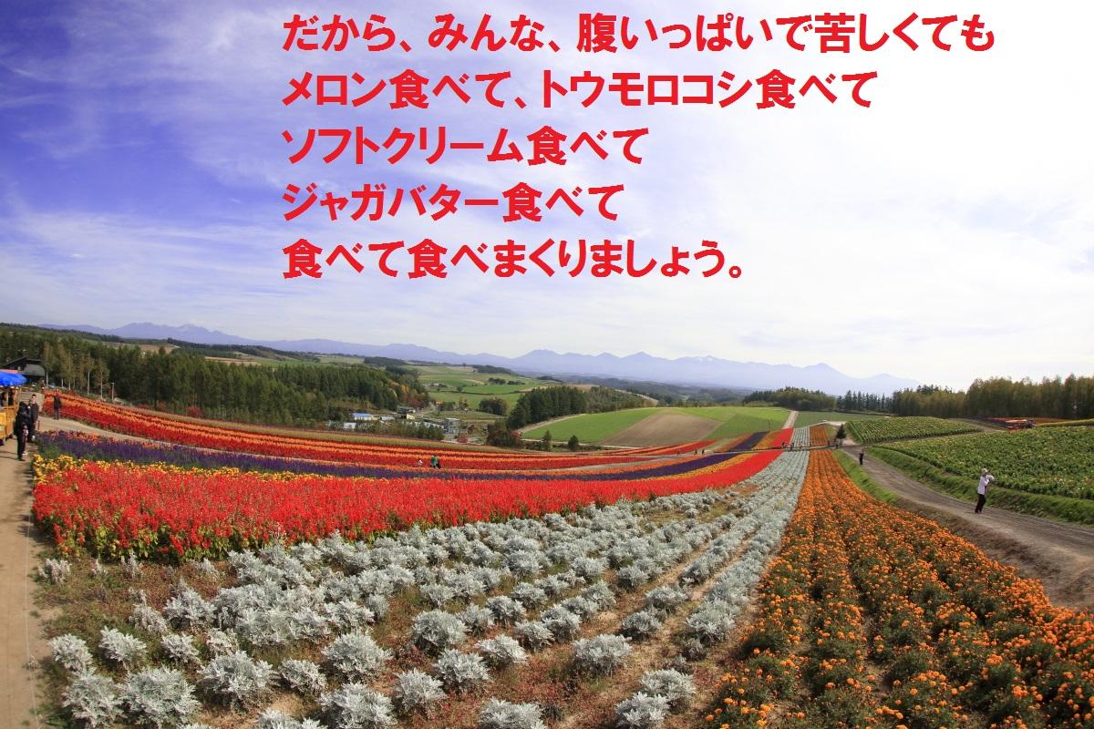 12_20141013221130845.jpg