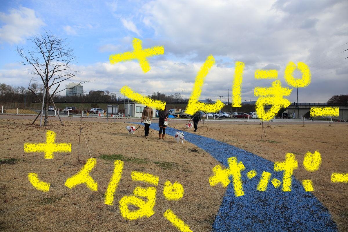1_20131124180659dae.jpg