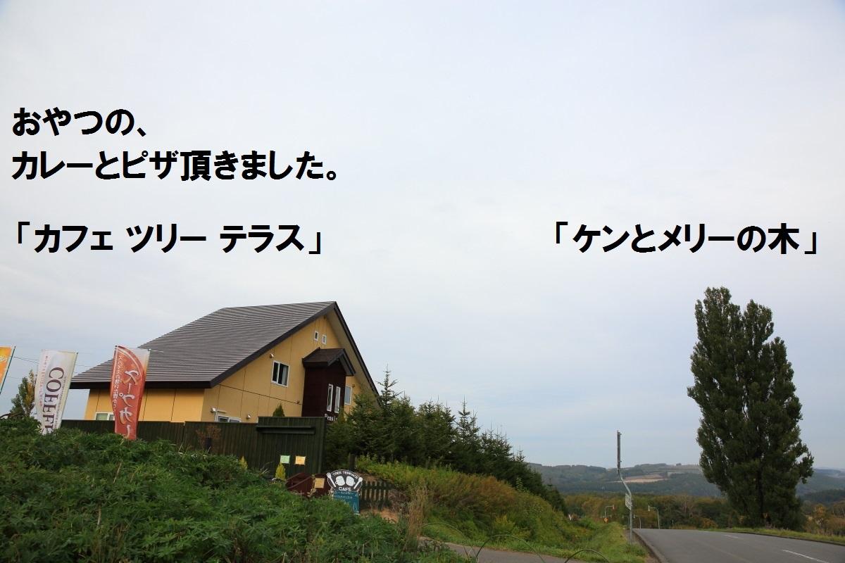 2K5A4716.jpg