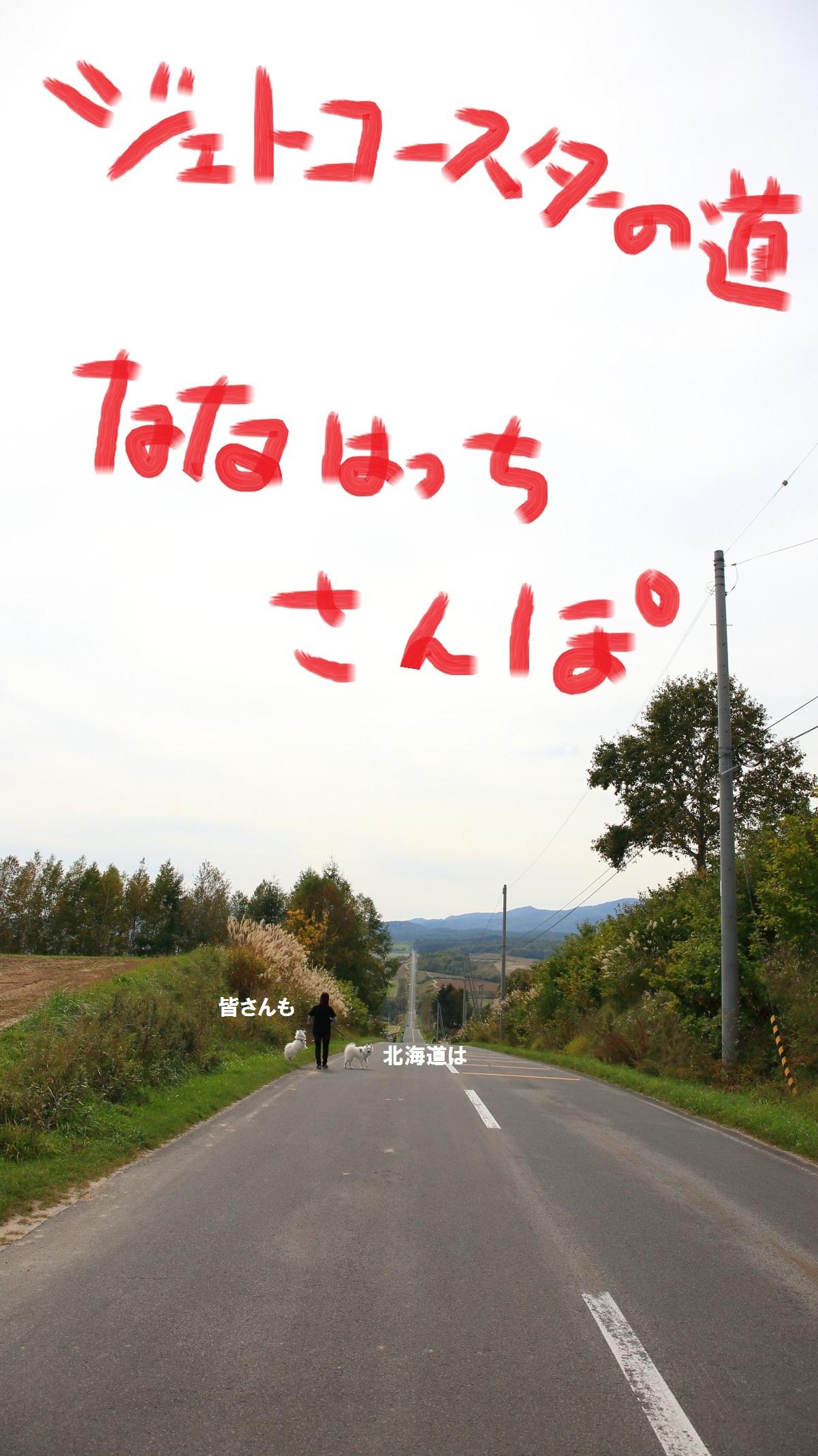 2_20141010074407edf.jpg