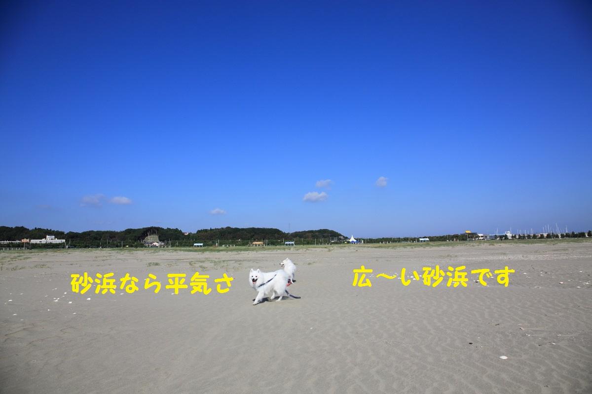 3_20131129193906d0a.jpg