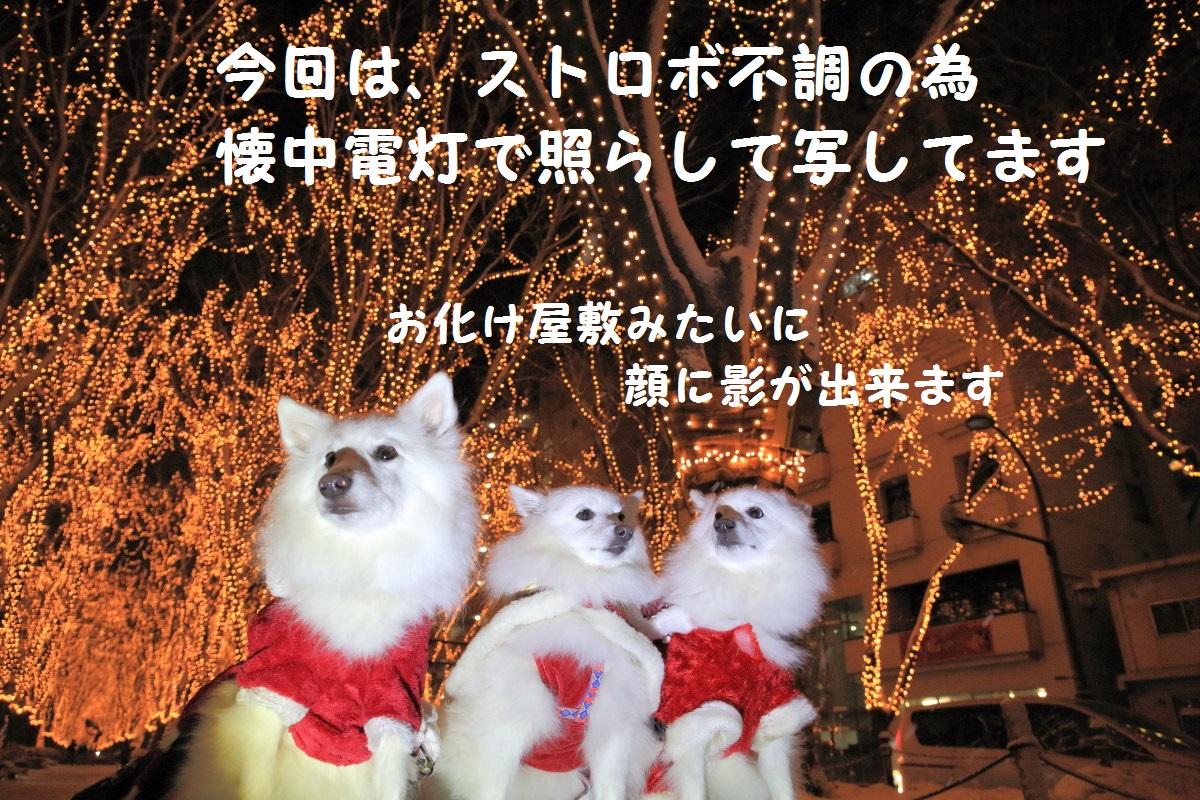 3_20131220195842b6d.jpg