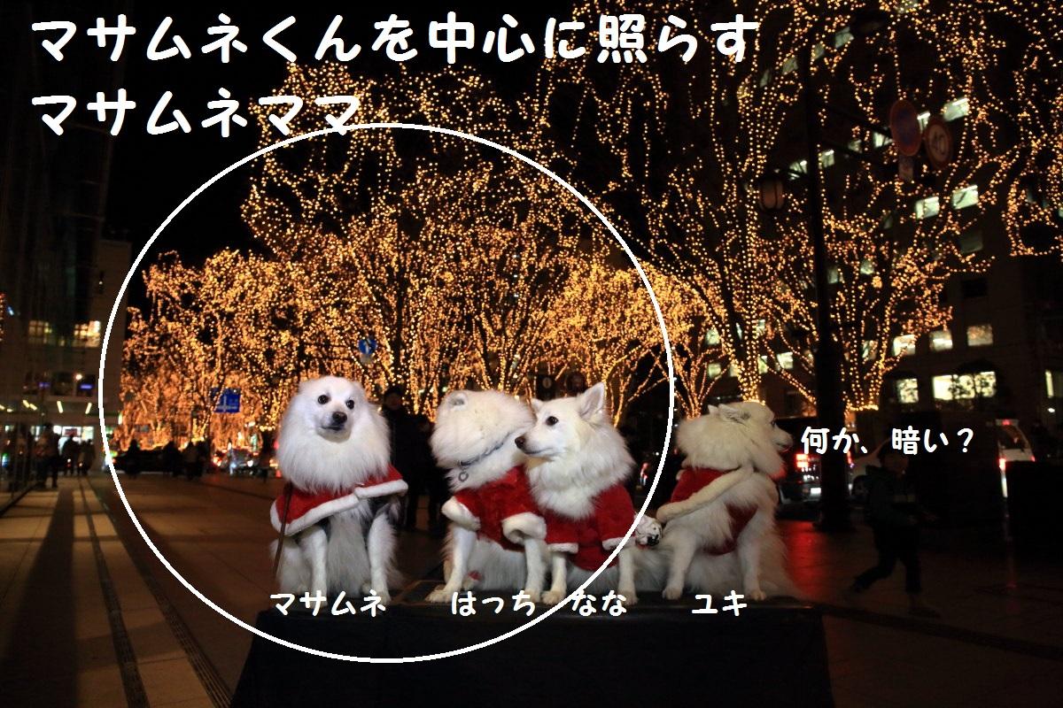 3_20131223210427336.jpg