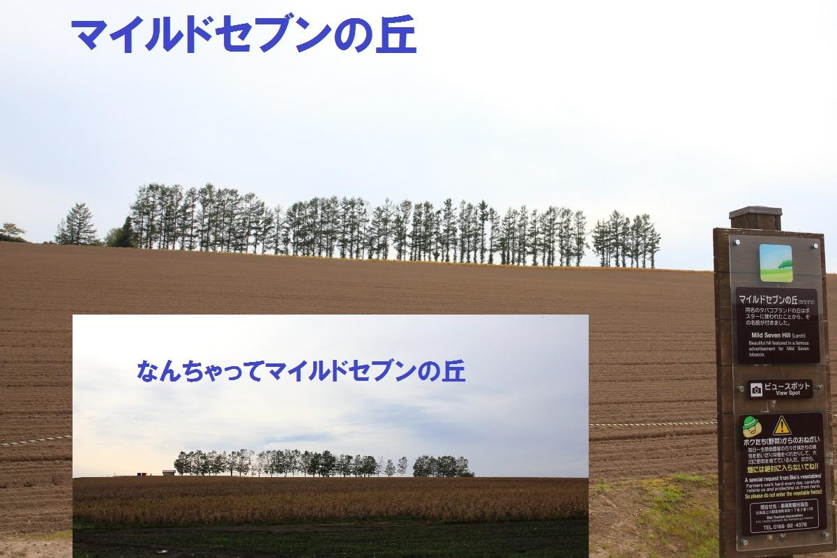 3_2014100922431301b.jpg