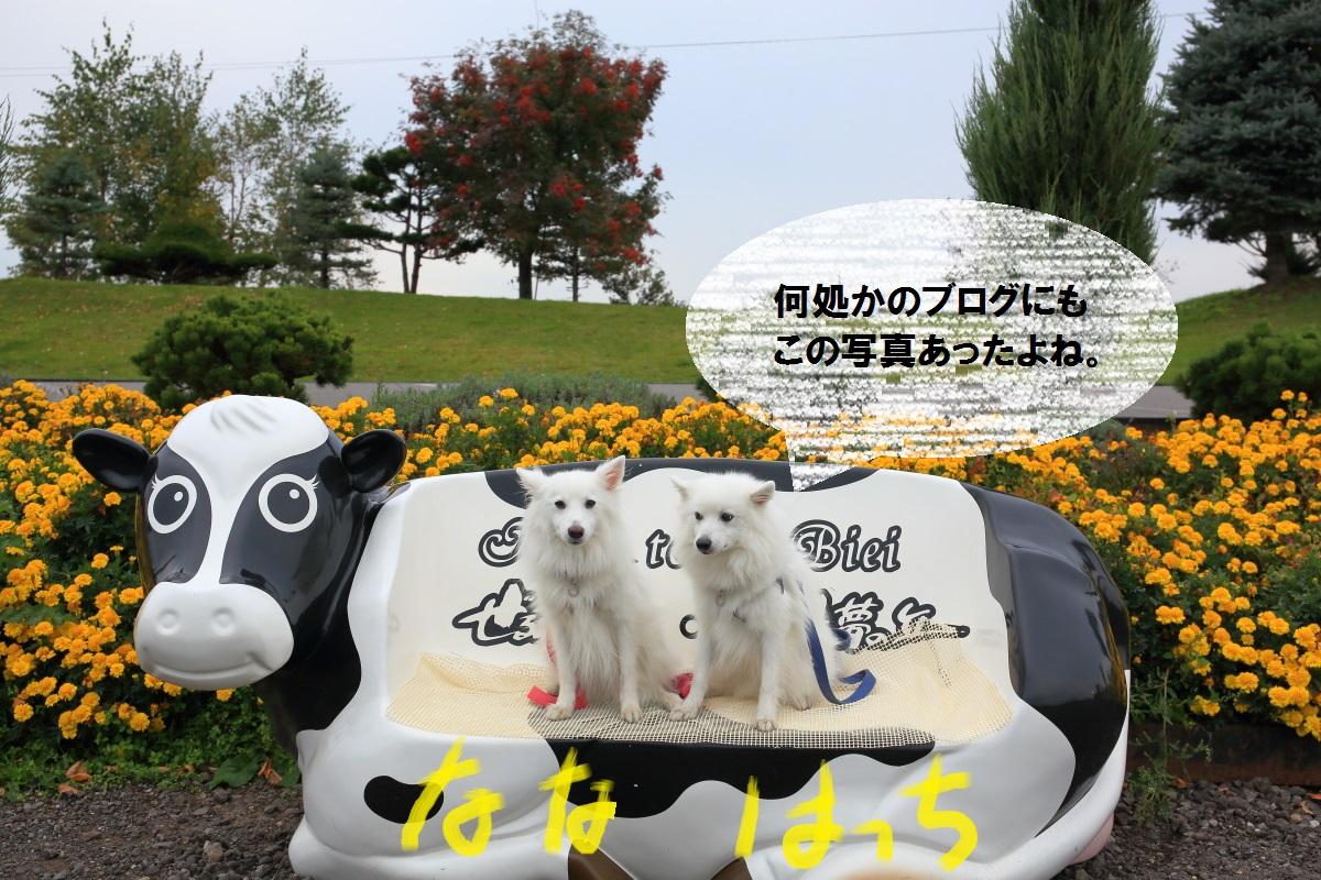 3_201410130616414d3.jpg