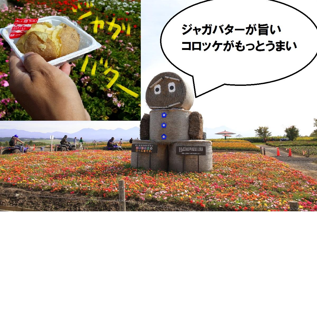 3_20141013221036a79.jpg