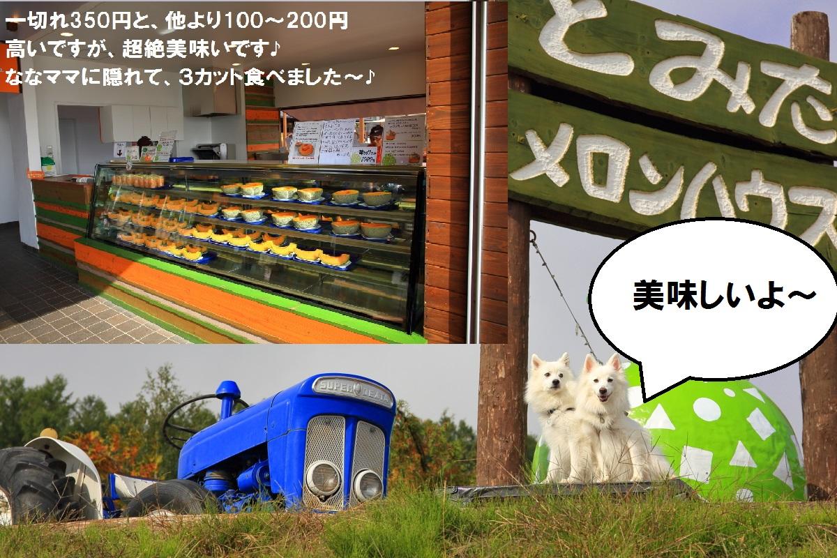 3_20141015191711e3c.jpg