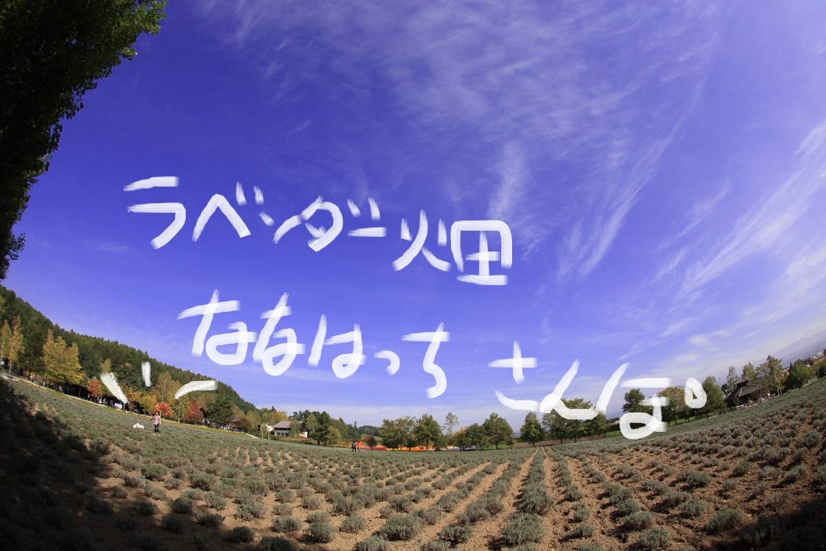 4_20141016233300353.jpg