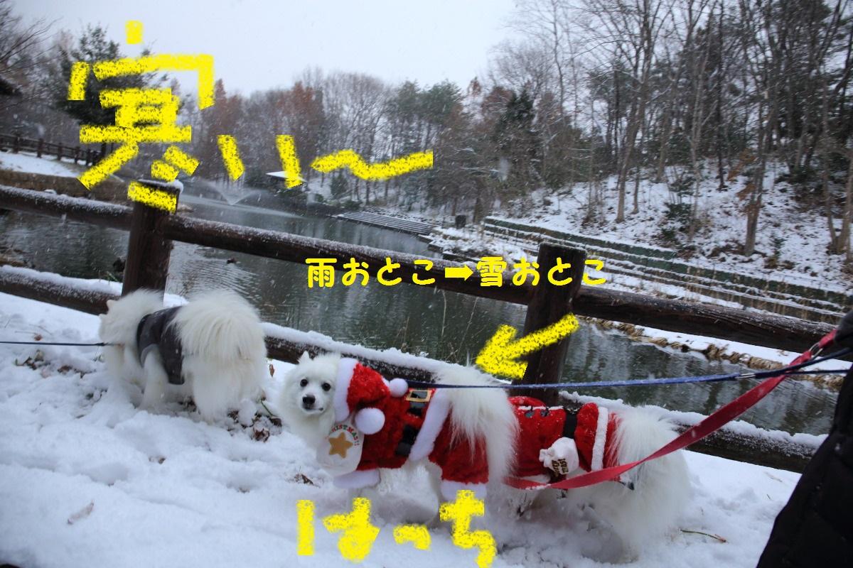 5_20131219191024e1f.jpg