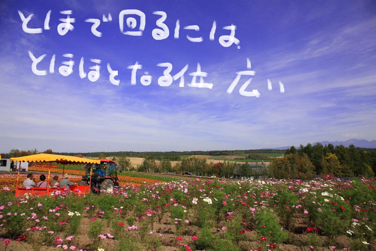 6_2014101322103388f.jpg