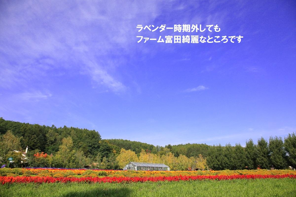 7_201410162334002ce.jpg