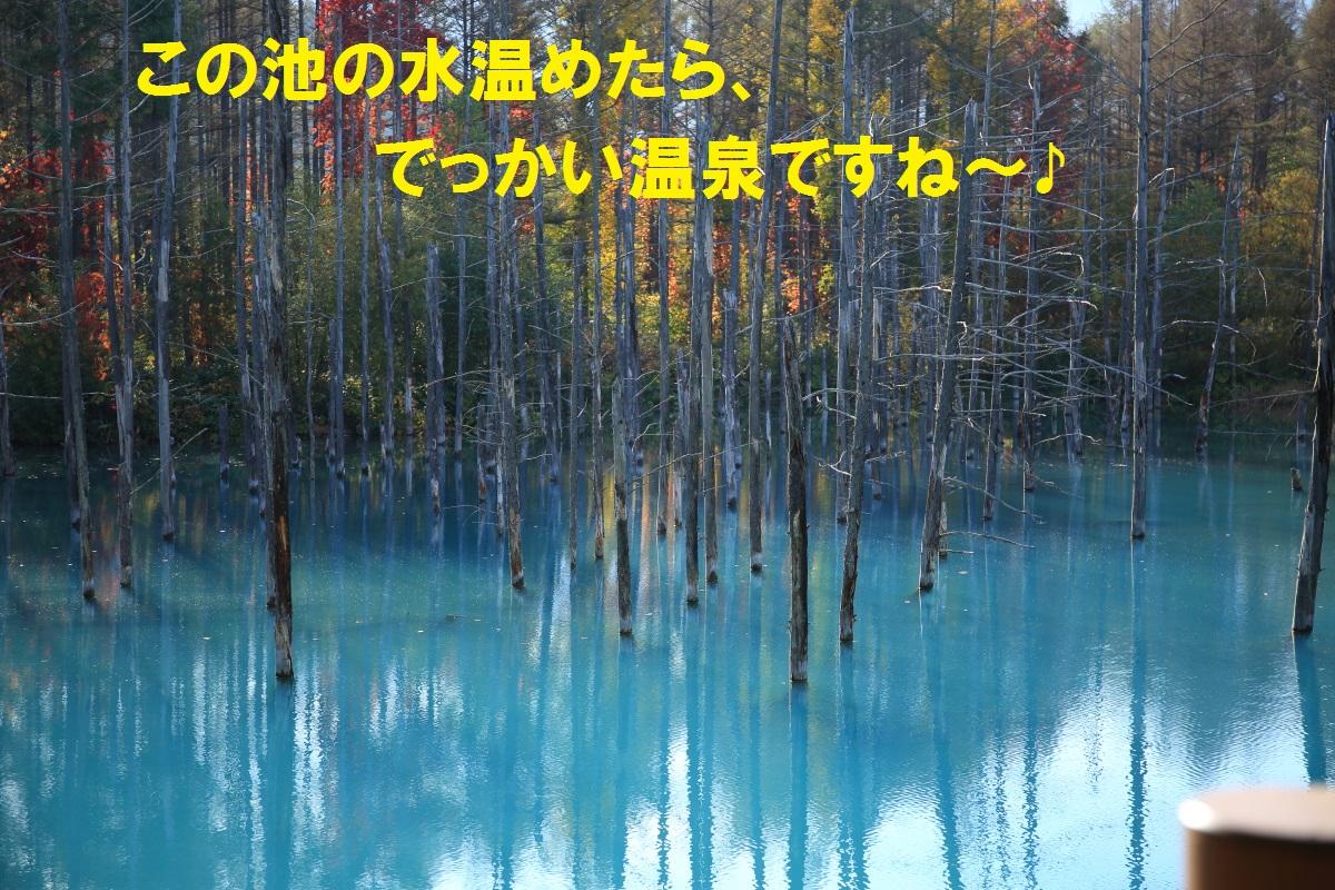 8_20141009190535e02.jpg